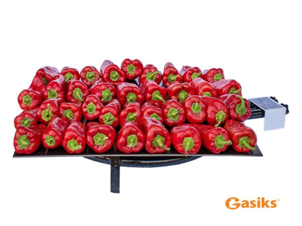 profesionalni komplet za pecenje paprike